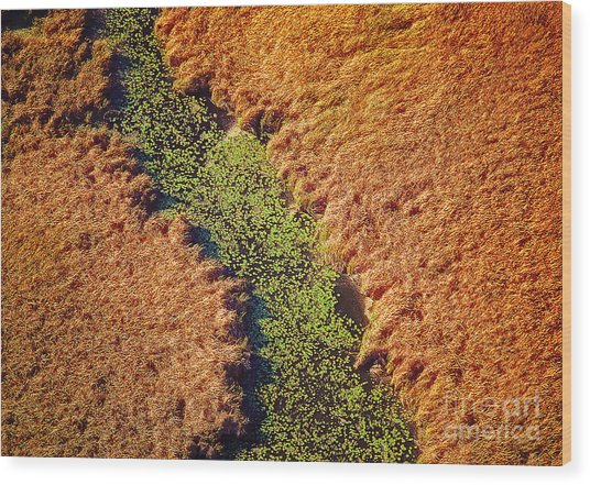 Aerial Farm Stream Lillies  Wood Print