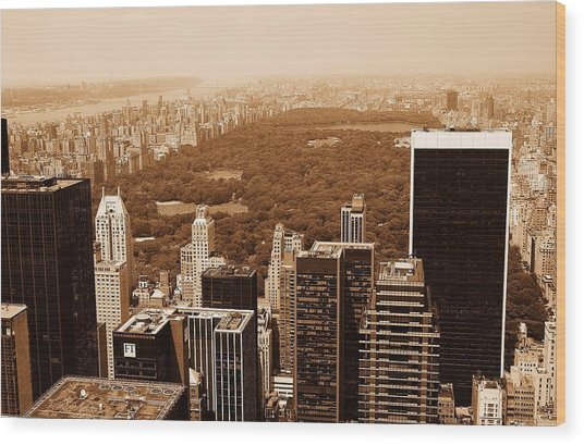 Aerial View Central Park Wood Print by Allan Einhorn