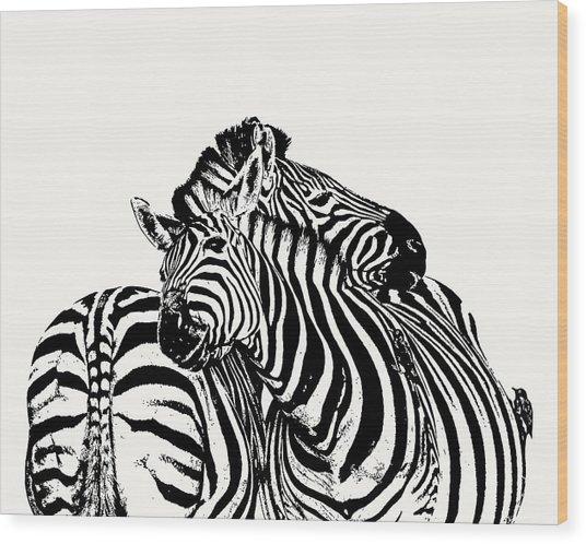 Affectionate Zebra Pair Wood Print