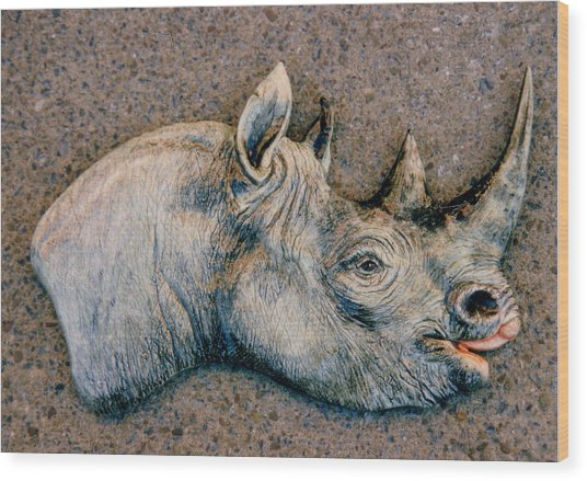 African Black Rhino Wood Print by Dy Witt