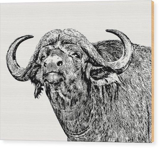 African Buffalo Bull Portrait Wood Print