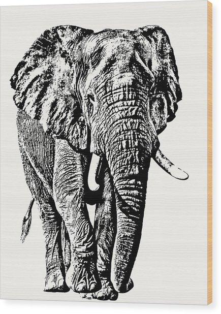 African Elephant Bull, Full Figure Wood Print