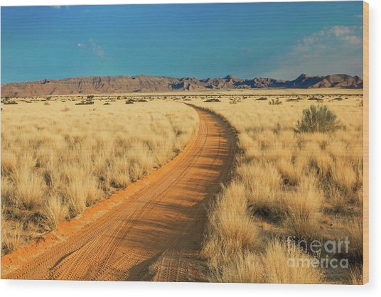 African Sand Road Wood Print