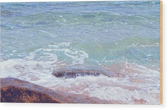 African Seashore Wood Print