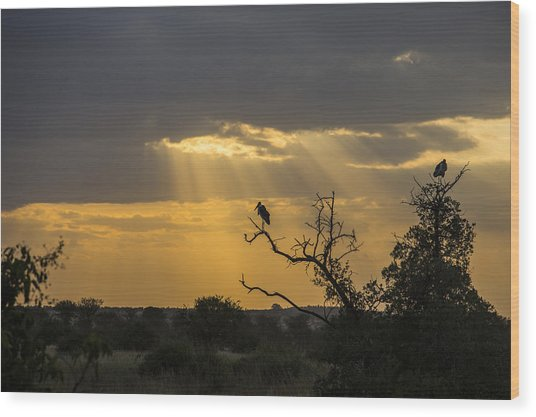 African Sunset 2 Wood Print