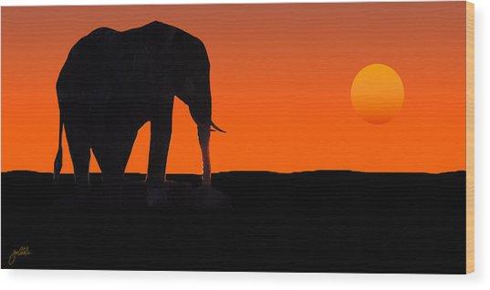 African Sunset Wood Print by Joe Costello