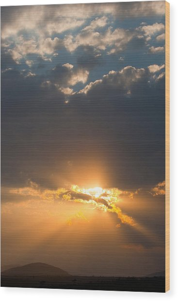 African Sunset Wood Print by Paco Feria
