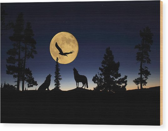 After Sunset Wood Print