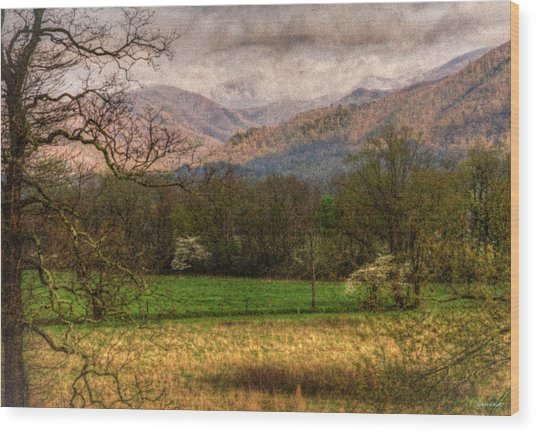 After The Spring Rain Wood Print