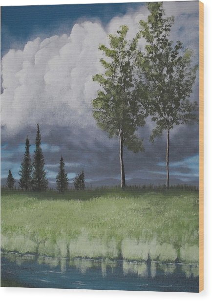 After The Storm Wood Print by Candace Shockley