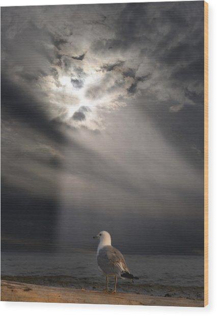 After The Storm Wood Print by Elizabeth Reynders