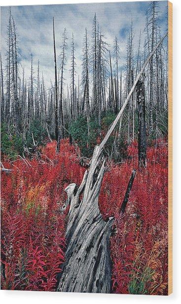 Afterburn Wood Print