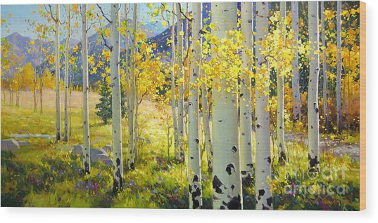 Afternoon Aspen Grove Wood Print