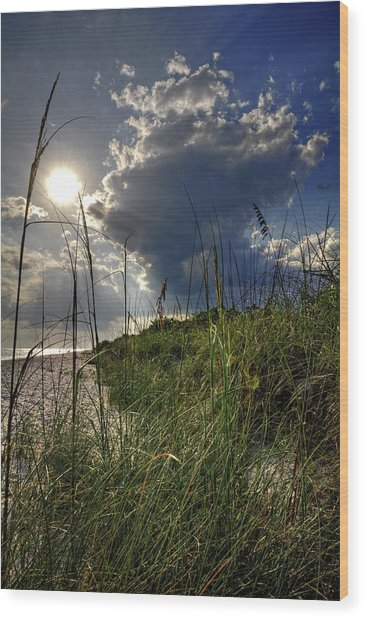 Afternoon At A Sanibel Dune Wood Print