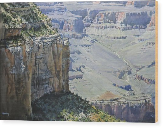 Afternoon At The Canyon Wood Print