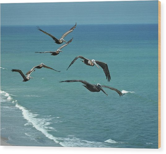 Afternoon Flight Wood Print by Frank Mari