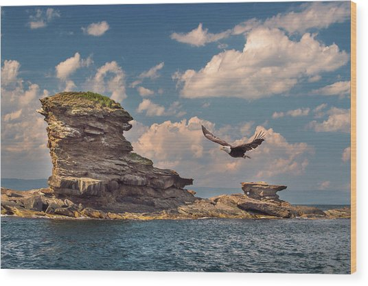 Afternoon Flight Wood Print by Tracy Munson