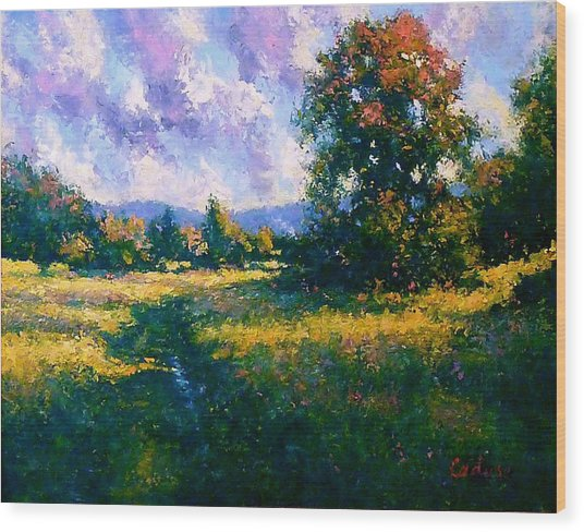 Afternoon In Dutchess County Wood Print by Gene Cadore