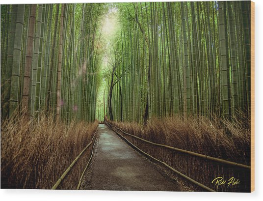 Afternoon In The Bamboo Wood Print