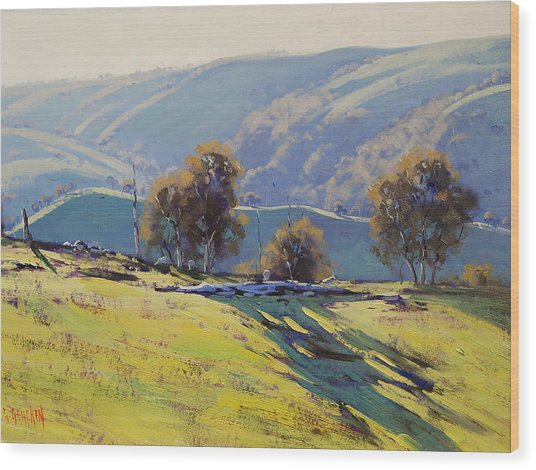 Afternoon Light Lithgow Wood Print