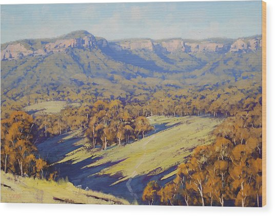 Afternoon Light Megalong Valle Wood Print