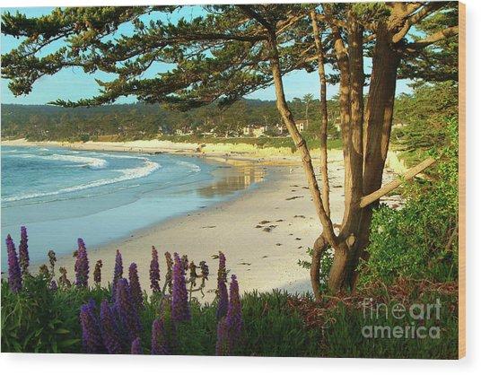 Afternoon On Carmel Beach Wood Print