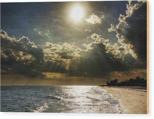 Afternoon On Sanibel Island Wood Print