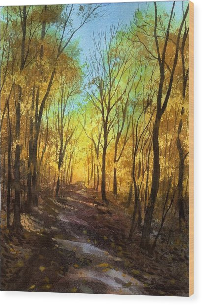 Afternoon Road Wood Print