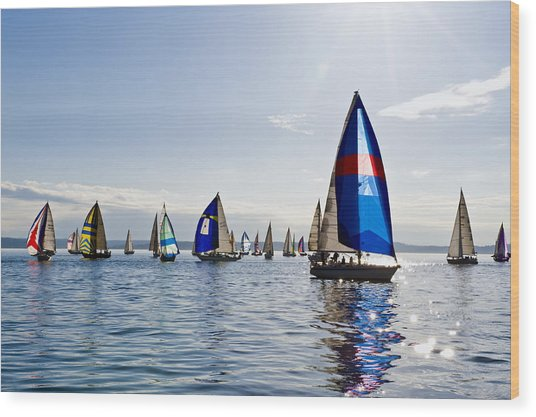 Afternoon Sailing Wood Print by Tom Dowd