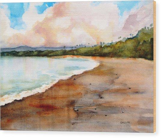 Aganoa Beach Savai'i Wood Print