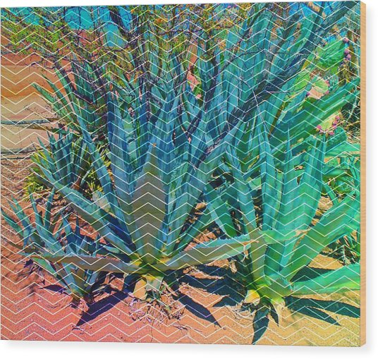Wood Print featuring the mixed media Agave by Michelle Dallocchio