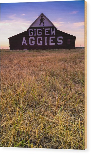 Aggie Land Wood Print