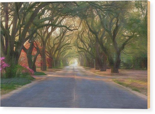 Aiken South Boundary Avenue Wood Print