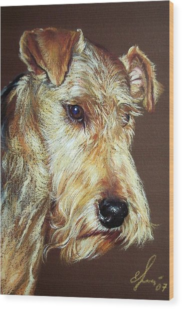 Airdale Terrier Wood Print