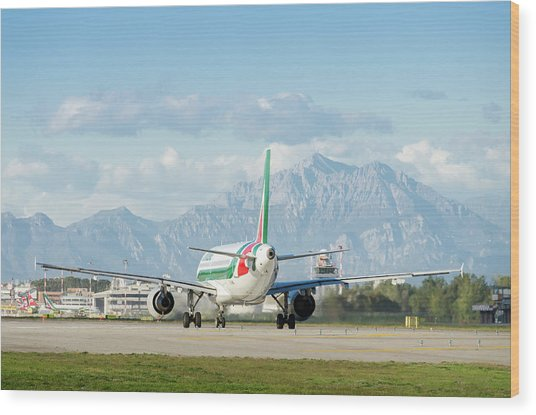 Airplane And Mountains Wood Print