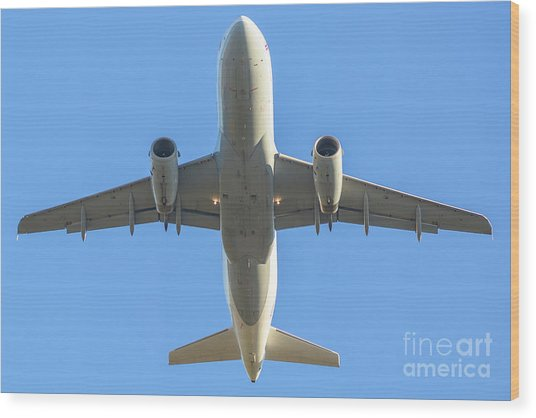 Airplane Isolated In The Sky Wood Print