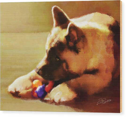 Akita Puppy Wood Print by Suni Roveto