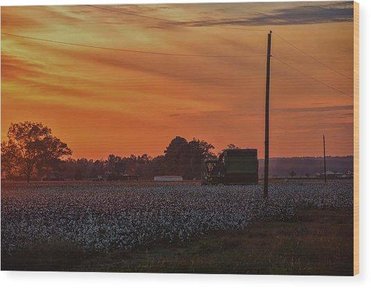 Alabama Cotton Fields Wood Print