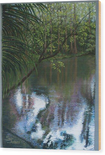 Alafia River Reflection Wood Print