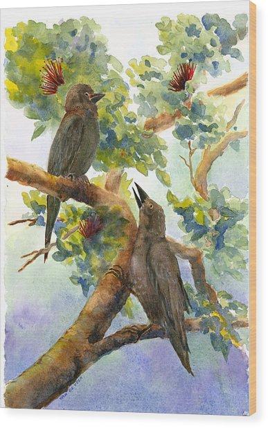 'alala Wood Print by Wicki Van De Veer
