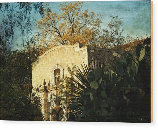 Alamo Mission Wood Print by Iris Greenwell
