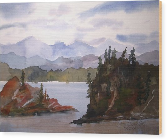 Alaska Inside Passage Wood Print