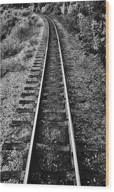 Alaska Tracks Wood Print