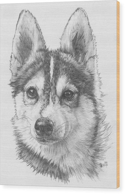 Alaskan Klee Kai Wood Print