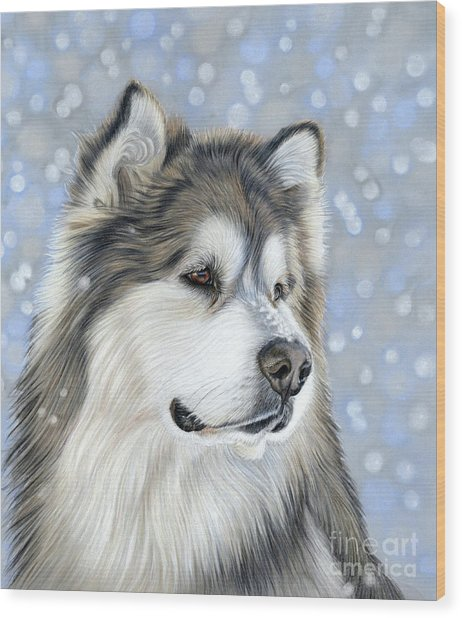 Wood Print featuring the mixed media Alaskan Malamute by Donna Mulley