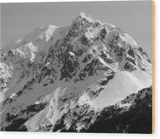 Alaskan Peak Wood Print by Ty Nichols