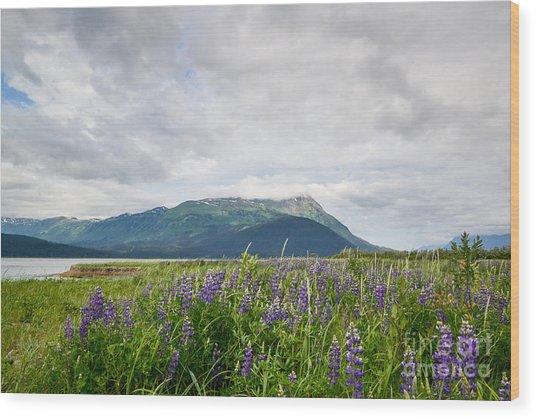 Alaskan Wildflowers Wood Print