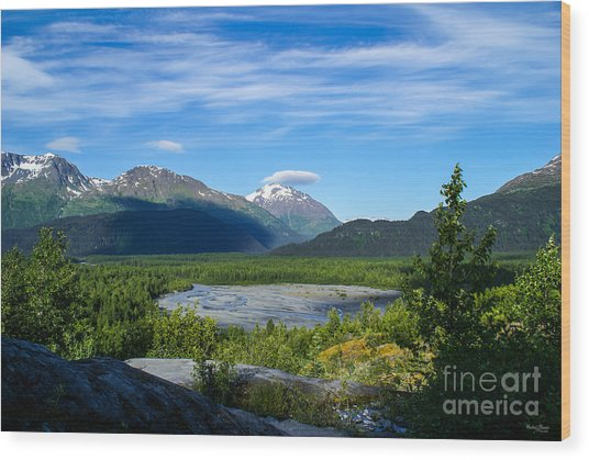Alaska's Exit Glacier Valley Wood Print