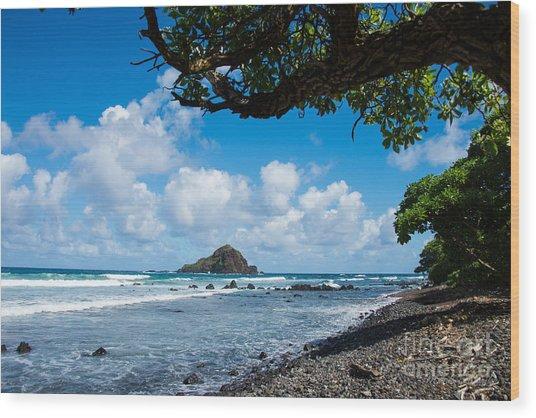 Alau Island, Maui Wood Print