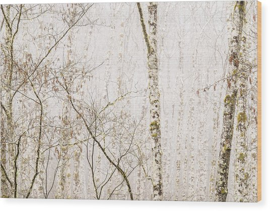 Alders In The Fog Wood Print